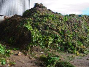 zöldhulladék elszállítás
