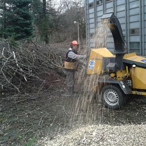 fa darálás